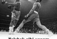 Muhammed Ali Hayatı Biyografi